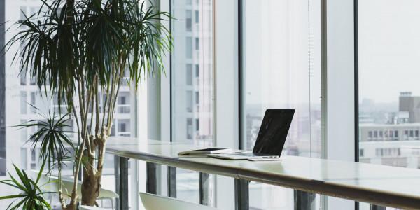 Online Business aufbauen Idee